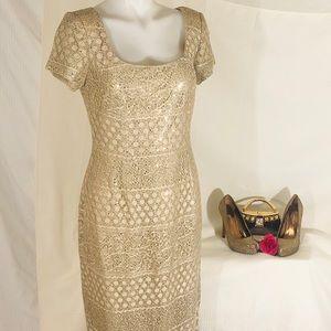 Bari jay's beautiful all gold prom/grad dress